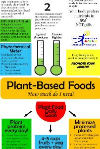 Plant Based Foods Diet